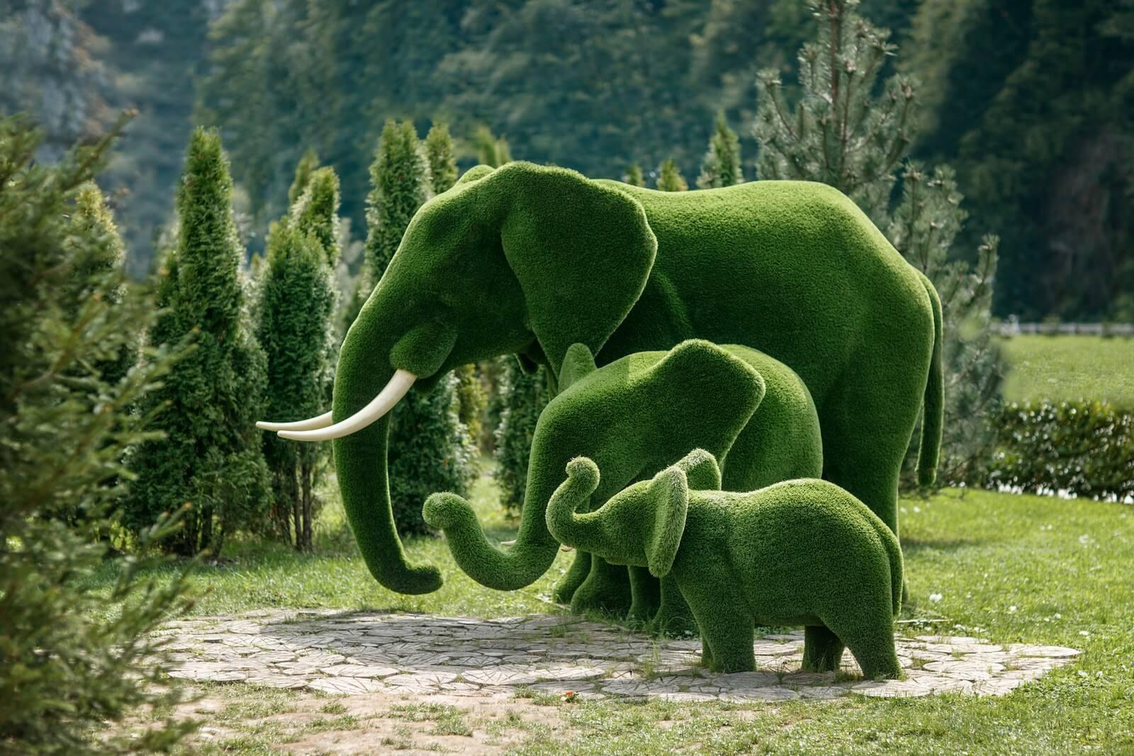 Kunstgras   Olifanten
