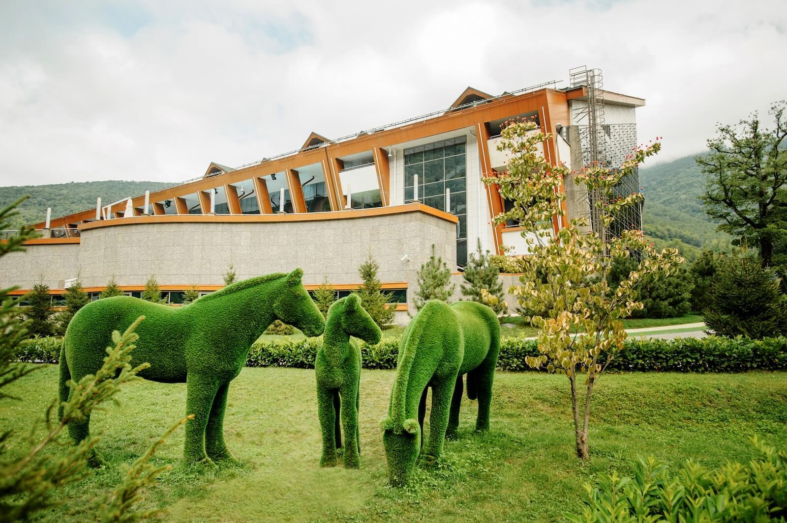 Kunstgras   Paarden